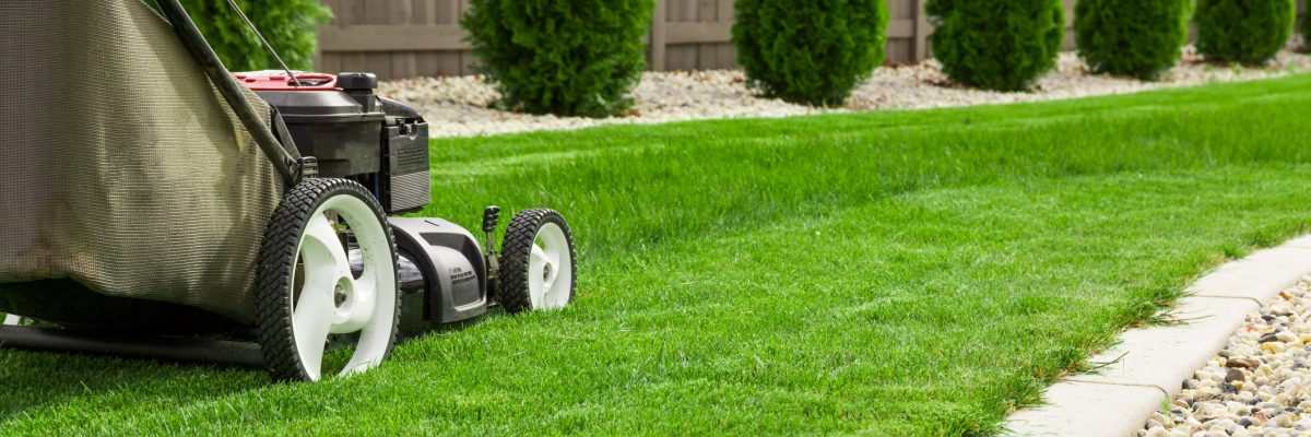 Keep lawns trimmed for kerbside appeal